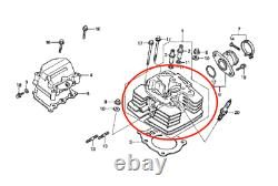 Cylinder Head fit Honda Rancher TRX350 2000-2006